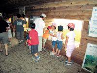 Mogamigawa Samidare Dam/Fish Gallery