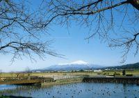 Koidenuma Noson Park